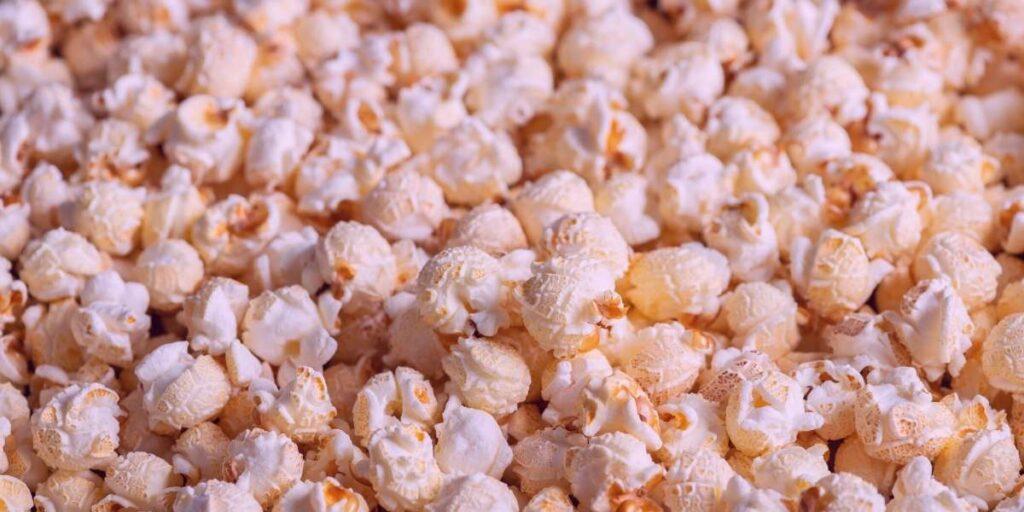 plain popcorn mushroom variety
